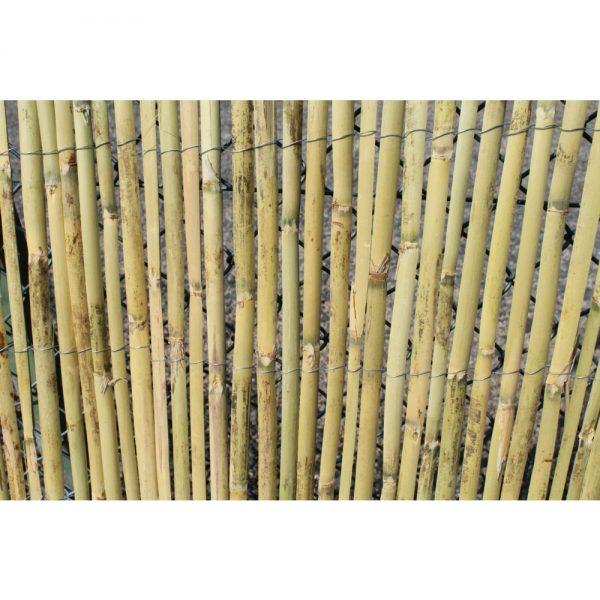 Tuinscherm, bamboe